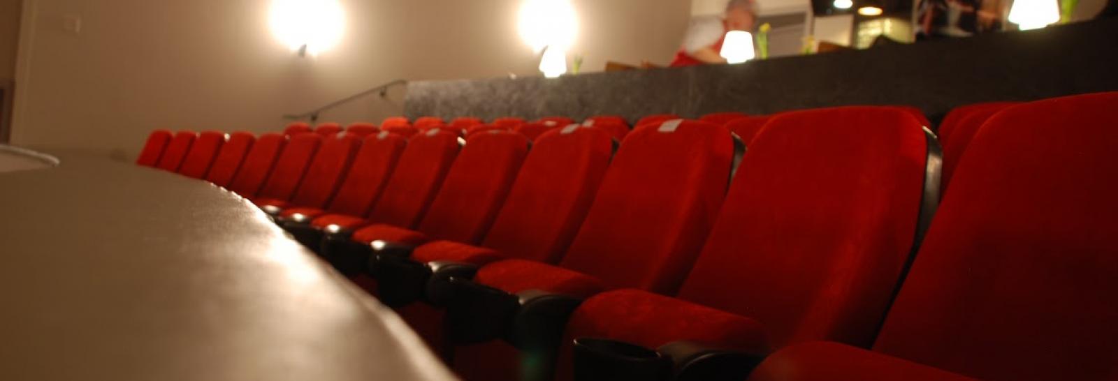 Kino Roxy Programm